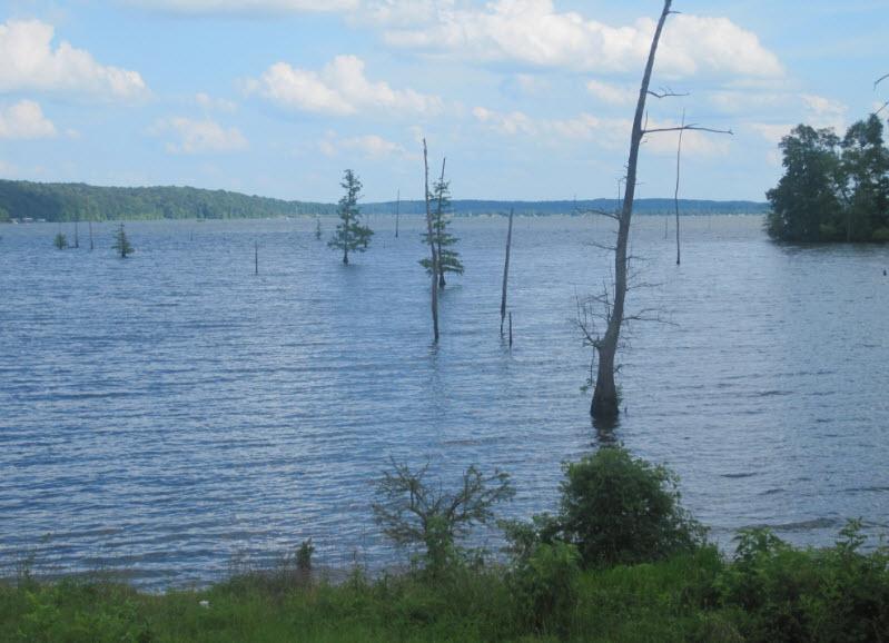 Lake DArbonne Travelhyme